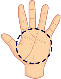 Quiromancia Online – Lectura de la palma de la mano Gratis